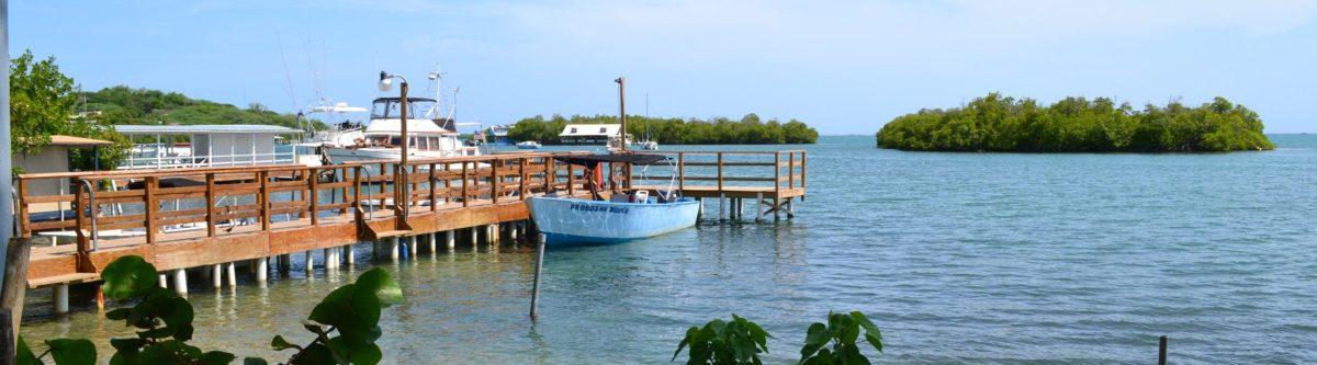 <b>Boat Tours</b>